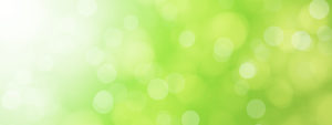 green blurred bokeh background illustration